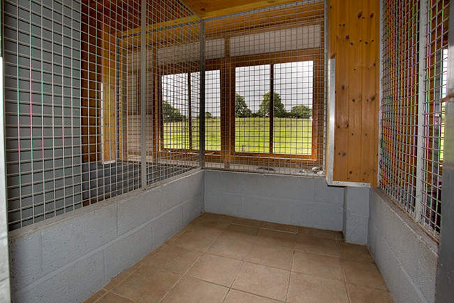dog kennels in ballymahon